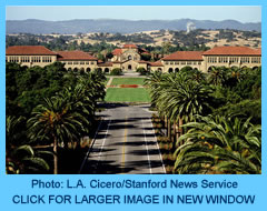 1 Palm Drive, Photo by L.A. Cicero/Stanford News Service